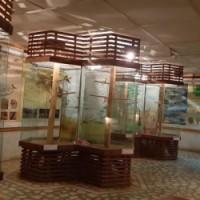 Atractii Kub House, Bacau
